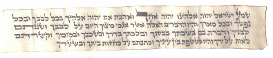 Shema section